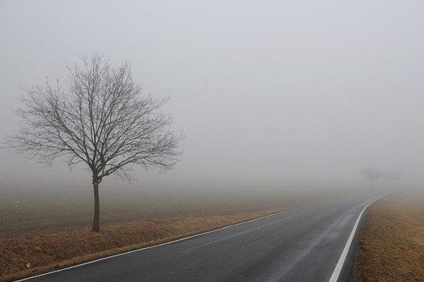 На фото – туман в дневное время